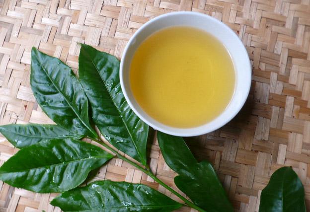 Bị tàn nhang nên uống trà xanh